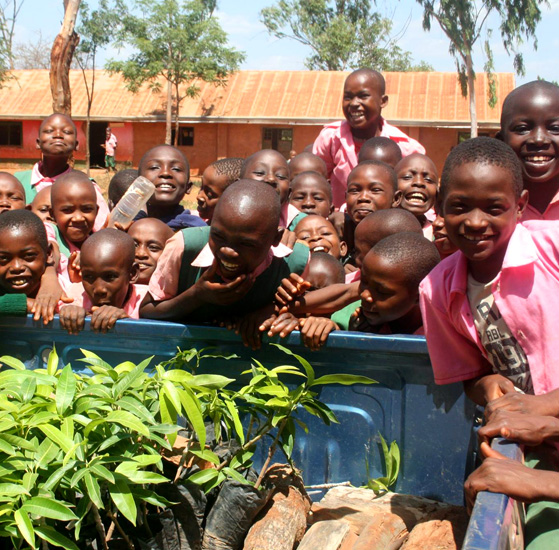 african school receiving tree donations